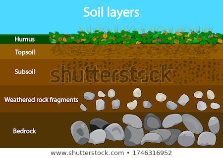 Diagram showing soil layers on earth Stock photo © bluering