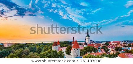 Panorámakép kilátás Tallinn Észtország domb este Stock fotó © borisb17