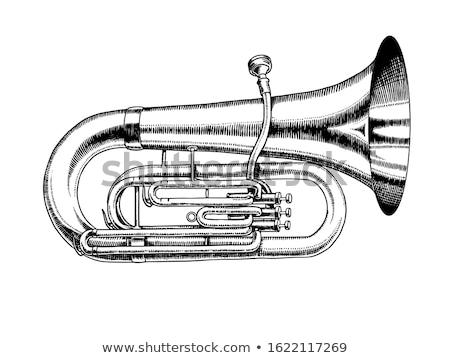 Tuba Euphonium Isolated on Blue Stock photo © mkm3