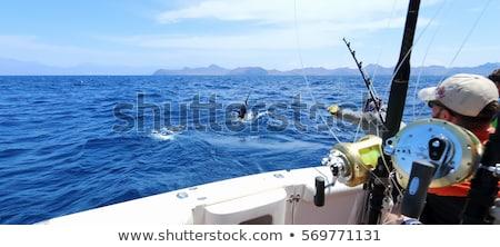 isca · isolado · branco · peixe · metal - foto stock © arenacreative