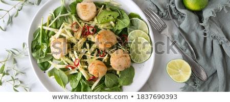 scallop and salad stock photo © m-studio