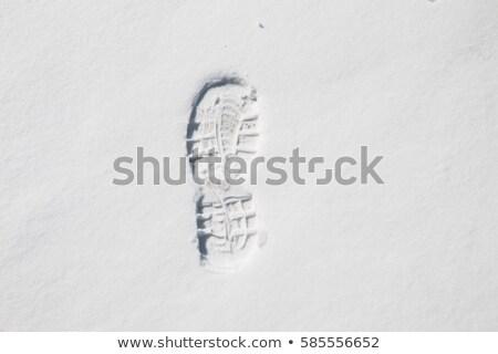 загрузка след снега человека вновь природы Сток-фото © Anterovium