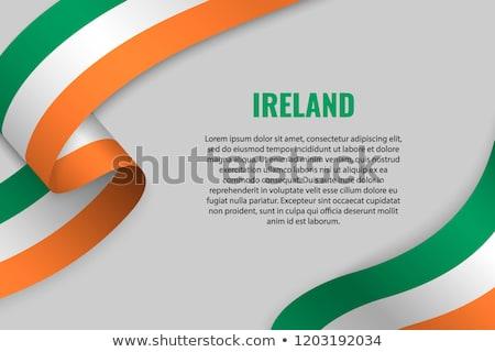 Euro · szimbólum · Írország · zászló · vektor · pénz - stock fotó © stockwerkdk