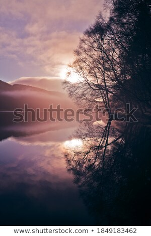 Foggy morning over the still lake Stock photo © konradbak