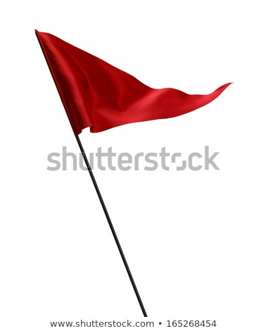 business team with blank flag isolated stock photo © kirill_m