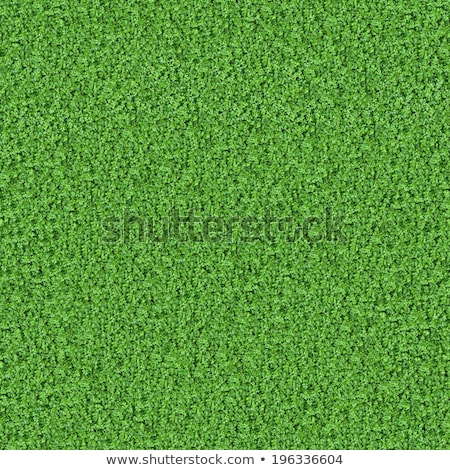 Young Green Grass. Seamless Tileable Texture. Stock photo © tashatuvango