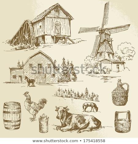 эскиз Windmill вектора Vintage прибыль на акцию 10 Сток-фото © kali