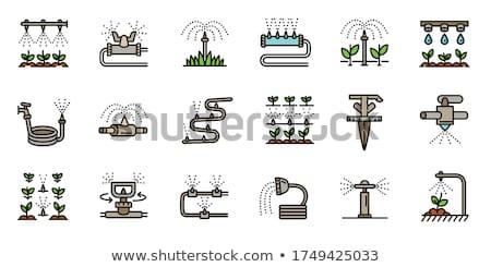 öntözés zöld mező farm mobil horizont Stock fotó © vanessavr