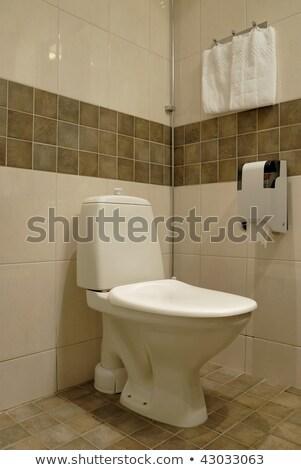 Recentemente casa foto espaçoso moderno Foto stock © shivanetua
