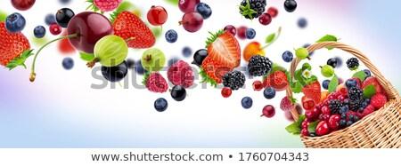 Karpuzu gıda meyve kırmızı diyet makro Stok fotoğraf © Bumerizz