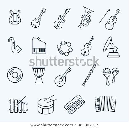 Hangszerek ikonok ikon zene gitár mikrofon Stock fotó © artisticco