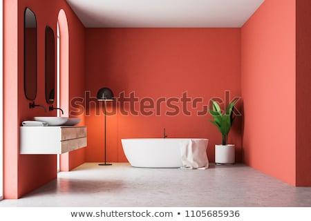 Piros fürdőszoba házbelső modern fürdőkád kortárs Stock fotó © NiroDesign