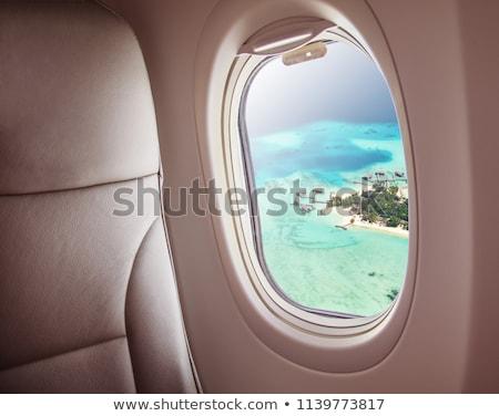 ver · avião · avião · asa · blue · sky · neve - foto stock © sarymsakov