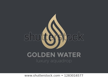 Fire  logo template. Fashion Jewelry luxury concept abstract  Stock photo © Fractal86