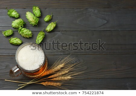 Glas mok vol groene hop bier Stockfoto © fotoaloja