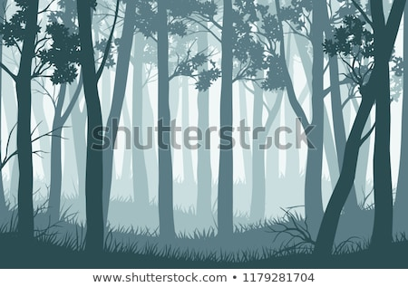 winter abstract landscape   wild trees in the misty fog stock photo © taiga