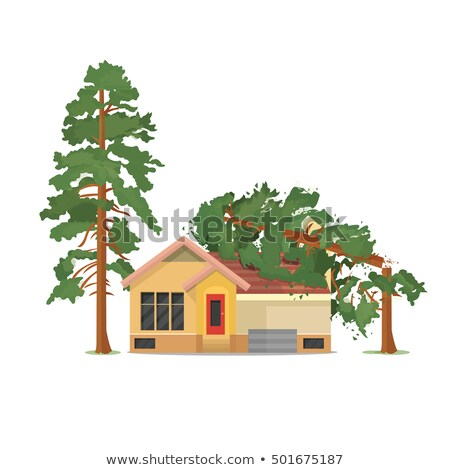 House destroyed. Tree fell on house. Cracks in walls of home. Property insurance.  Stock photo © orensila