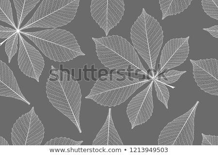 detalhado · folhas · sem · costura · eps · 10 · vetor - foto stock © beholdereye