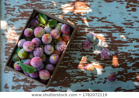 ripe plums with leaves stock photo © masha