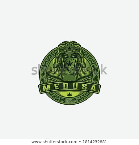 医療 ヘビ シンボル 大麻 葉 デザイン ストックフォト © Zuzuan