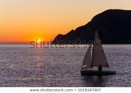 tropicales · mar · puesta · de · sol · palmas · hermosa · paisaje - foto stock © maxmitzu
