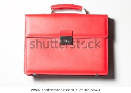 Biznesmen czerwony przypadku ilustracja biały dżinsy Zdjęcia stock © bluering