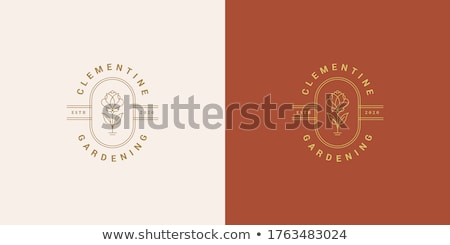 Garden Blooms Logo Concept Stock photo © sdCrea