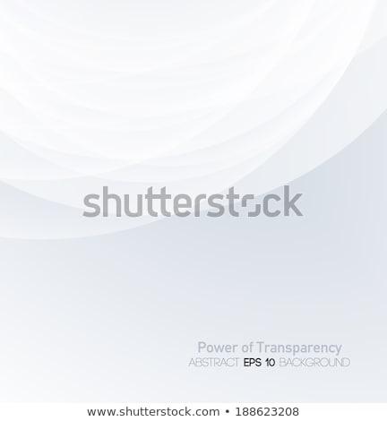 stylish gray background with minimal wave Stock photo © SArts