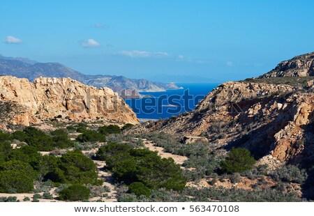 naturalismo · parque · Espanha · ver · canárias · montanha - foto stock © amok