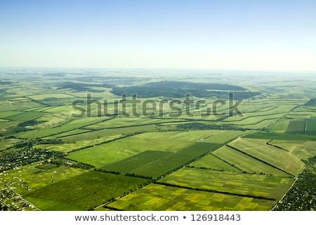 Légifelvétel zöld mezők farm ház Hamburg Stock fotó © meinzahn