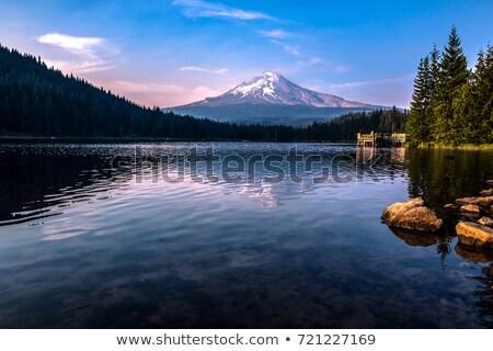 Lago tramonto stormy nubi foresta natura Foto d'archivio © davidgn