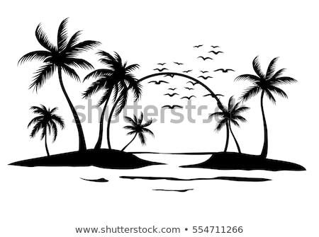 Vector cartoon stijl illustratie strand palmbomen Stockfoto © curiosity