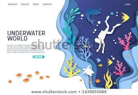 Búvárkodik ikon hínár vektor tengerpart víz Stock fotó © blotty