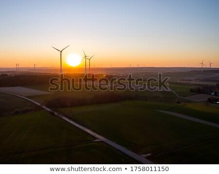 windturbines in sunrise stock photo © 5xinc