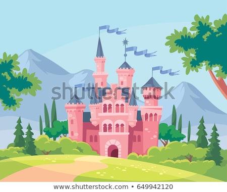 Fantasy · vecteur · château · clair · de · lune · ciel · silhouette - photo stock © kostins