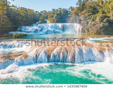 Giungla cascate acqua natura cascata fiume Foto d'archivio © THP