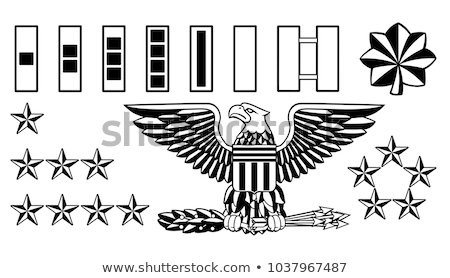 military army officer rank insignia stock photo © krisdog