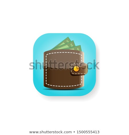 Brown bitcoin wallet icon with coin and credit card, isolated background, vector illustration. Stock photo © ikopylov