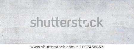 çimento duvar doku gri Stok fotoğraf © tashatuvango