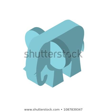 Elephant isometry style. African animal Vector illustration Stock photo © popaukropa