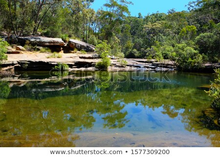 Beautiful rock pool swimming spot on Sydney Stock photo © lovleah