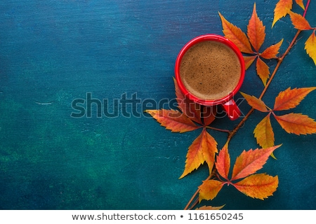 Hot coffee and autumn leaves Stock photo © Lana_M