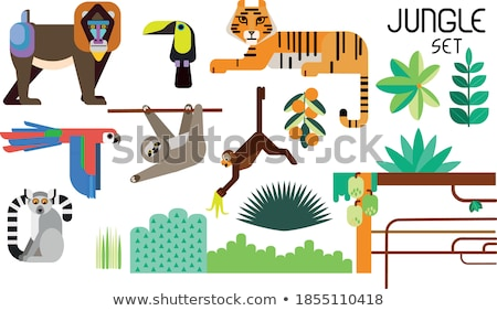 Tiger illustraion Stock photo © abdulsatarid