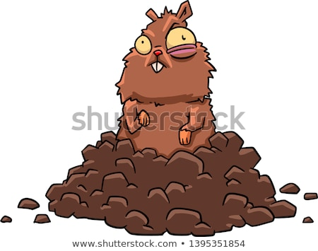 Cartoon cute animales dibujo vector Foto stock © mumut