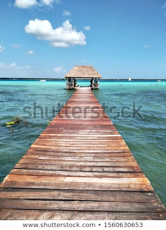 Caribbean zee strand pier hut hemel Stockfoto © lunamarina