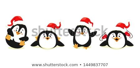 Sevinç tebrik kartı penguen paten vektör hayvan Stok fotoğraf © robuart