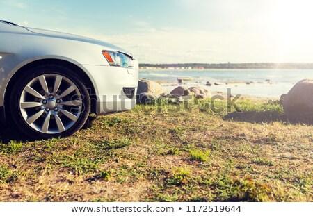 Auto zee wal strand zomervakantie Stockfoto © dolgachov