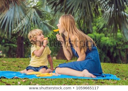 Anya fiú piknik park eszik egészséges Stock fotó © galitskaya