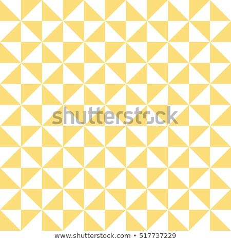 Pixel vecteur modèle géométrique Photo stock © yopixart