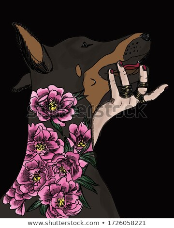Watercolor portrait doberman in a wreath of peonies Stock photo © Natalia_1947